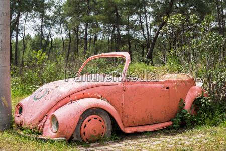 scarafaggio auto veicolo mezzo di trasporto