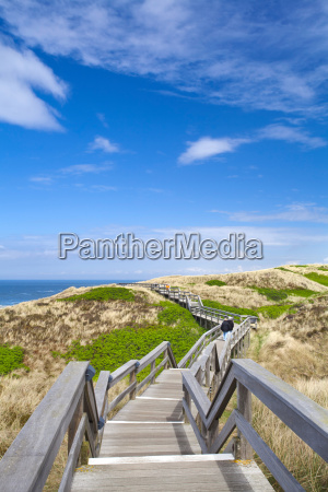 rustic wooden walkway in the dunes