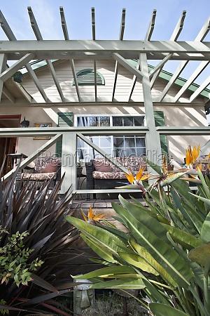 casa costruzione foglia fiore pianta finestra