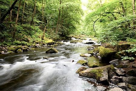 il fiume bode nel parco nazionale
