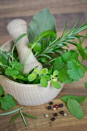 cucina cucinare macinare mortaio erbe aromatiche