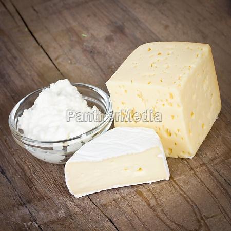 latte formaggio caseificio latticini camembert yogurt