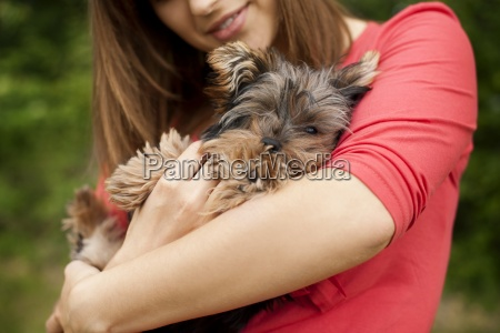 cute puppy on womans arms