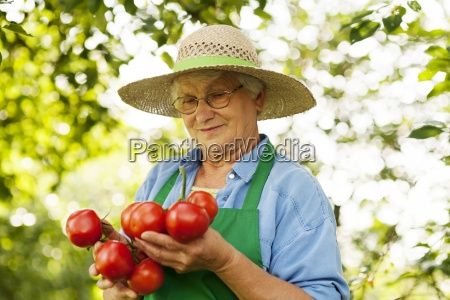 senior woman holding tomatoes