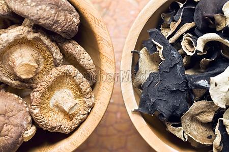 cucinare cucina orecchio cinese fungo gelatina