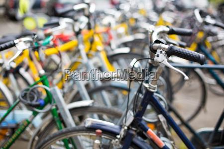 servizio di noleggio biciclette molte