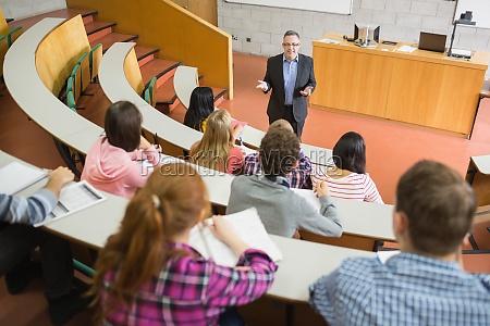 donna studiare studio seminario insegnante professore