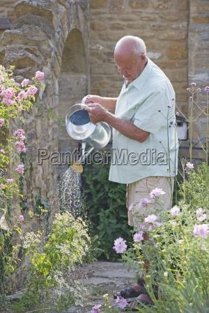 anziano uomo che lavora in bella