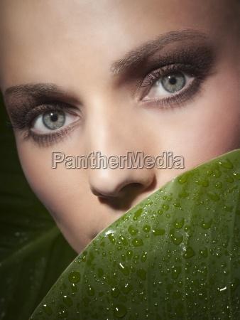 foglia primo piano close up foglie