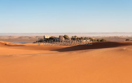 oasi nel deserto del sahara marocco