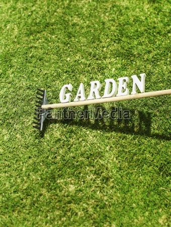 giardino estate canada allaperto fotografia foto