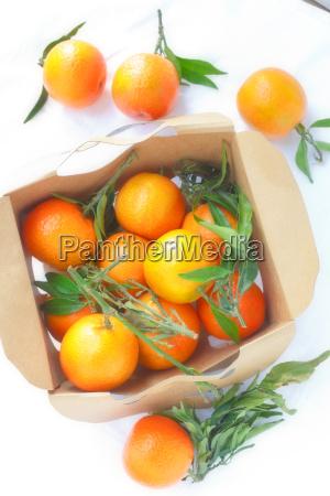 arancia frutta scatola scatolame cassone cofano