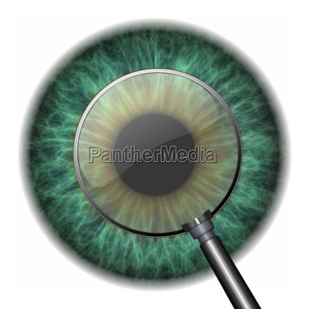 pupilla con occhio