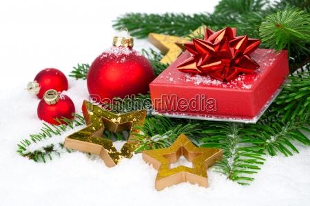 inverno pino nuovo festeggiare festeggia ramo