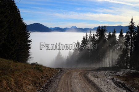fog cover in the mountains