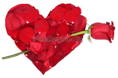 cuore di fiori con tema rosa