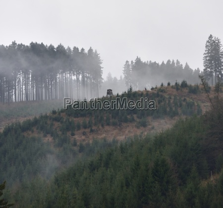 mist on the soesestausee in the