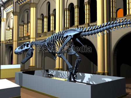 museo di storia naturale britannico con