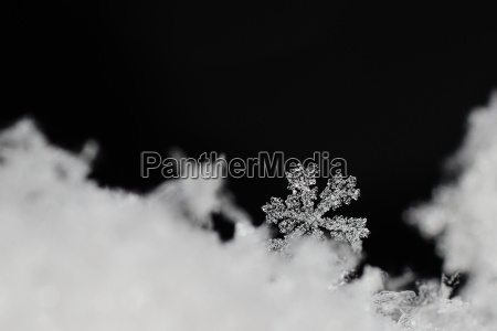 inverno freddo cristallo neve natale