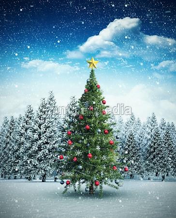 ambiente albero vacanza vacanze inverno freddo