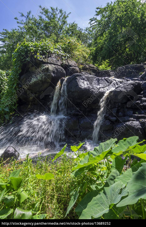 mauritius, -, balaclava, , wasserfall, am, citron - 13689252