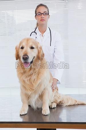 dottore medico donna ufficio bello bella
