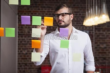 ufficio carriera avoro finestra virile mascolino