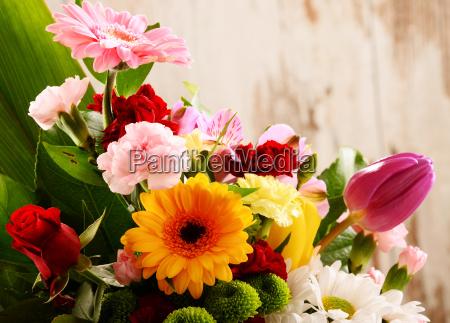 fiore pianta fioritura fiorire flora mazzo