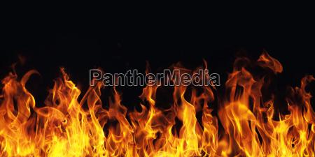 fiamma, che, brucia, il, fuoco, su - 13836585