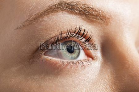 dettaglio faccia ritratto occhio organo pelle