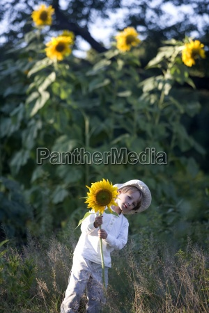 giardino fiore pianta stati uniti damerica