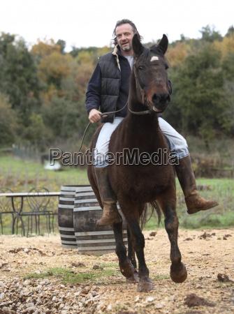 enologo sul cavallo