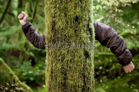 primo piano close up umorismo albero