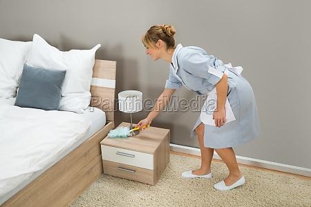 polvere di pulizia della domestica con