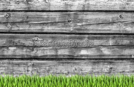 muro di legno e sfondo erba