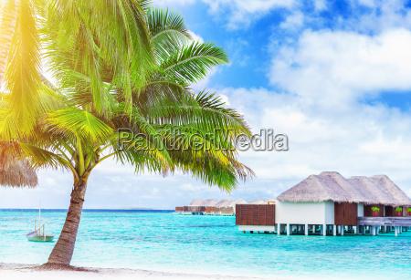 paradise beach paesaggio