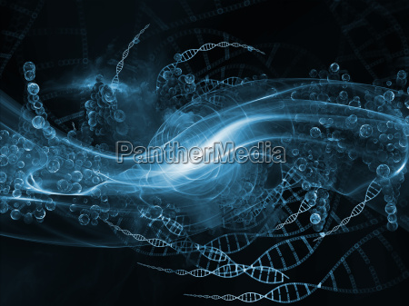propagation of dna