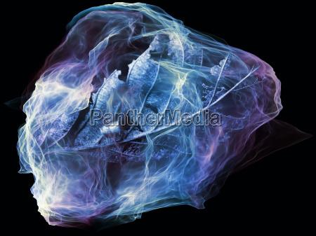 gioco della mente particella