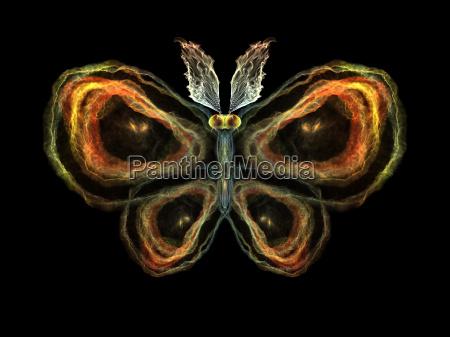 elementi farfalla