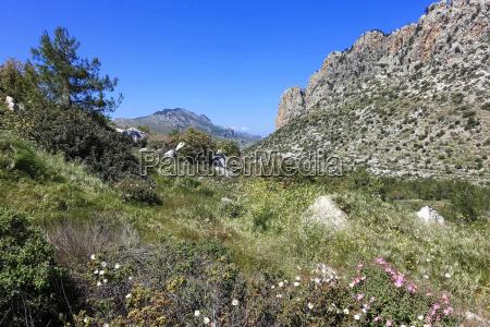 pietra sasso vacanza vacanze turchia segni