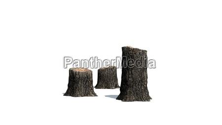 albero legno smussato blocco fumetto isolato