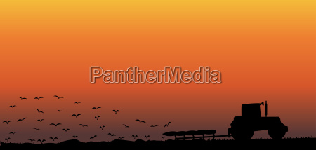 alba accendere cielo firmamento paesaggio natura