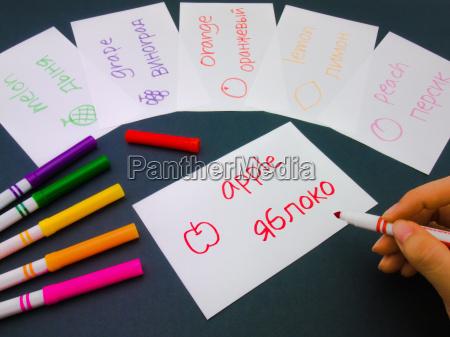studiare studio blu scrivere educazione cultura