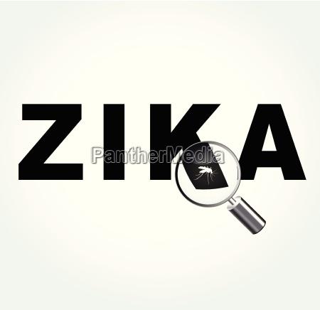 zanzara sul virus zika