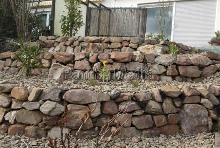 giardino pietra sasso fiore fiori rocce