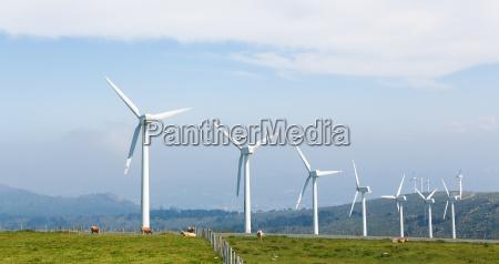 wind turbines on a wind farm