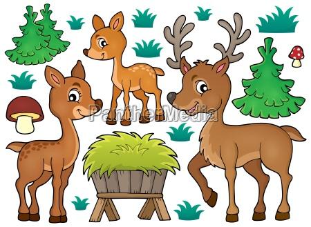 animale mammifero animali mammiferi natura cervo