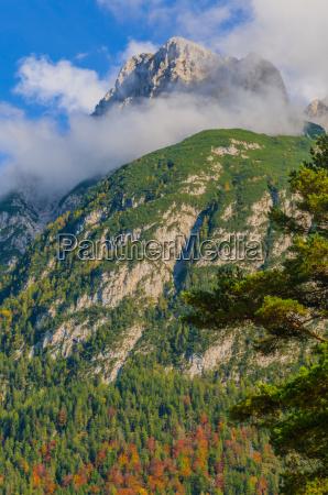 escursione gita pascolo alpino mittenwald migrare