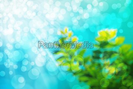 blu bello bella arte colore progettazione