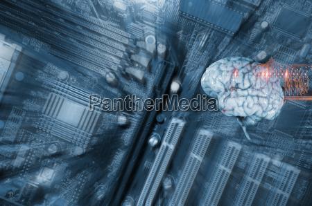 comunicazione cervello intelligenza situazione attuale del